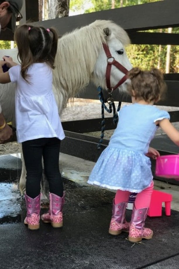 Private Horse Boarding Facility at Triple C Farms of Florida